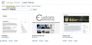 WordPress Theme Install